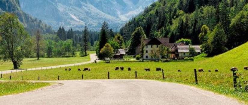 Reizen naar Slovenië met de auto