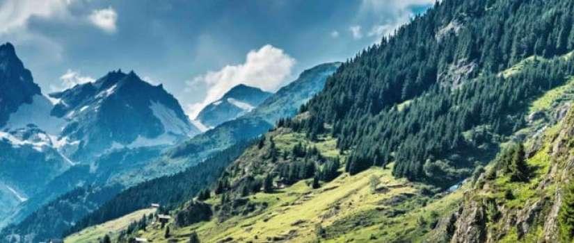 Verkeersinformatie in Zwitserland